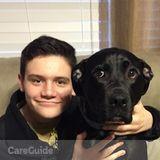 Dog Walker, Pet Sitter in Holly Springs