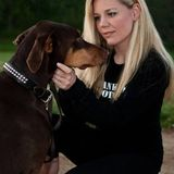 Burlington Dog Trainer & Behaviourist offering inhome Training, Walking & Pet Care