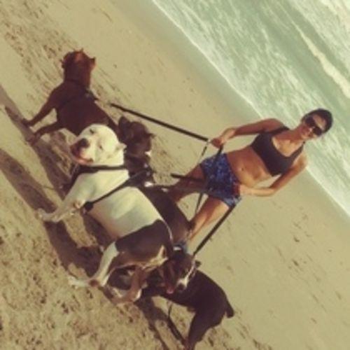 Pet Care Provider Lee Ann B's Profile Picture