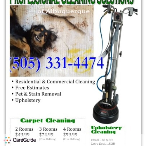 Housekeeper Provider Professional Cleaning Solutions Lolly's Profile Picture