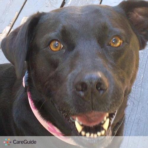 Pet Care Provider Conforta A's Profile Picture