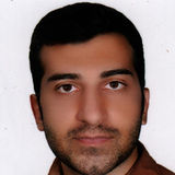 I am a young, energetic boy with AZ driver's license with clean record, punctual, polite, customer-oriented and reliable