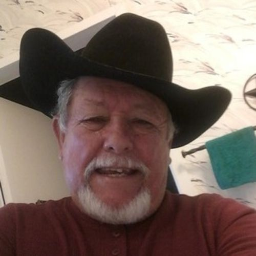 House Sitter Provider George P's Profile Picture