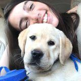 Queensbury Petsitter Interviewing for Part-Time Pet Care Employment