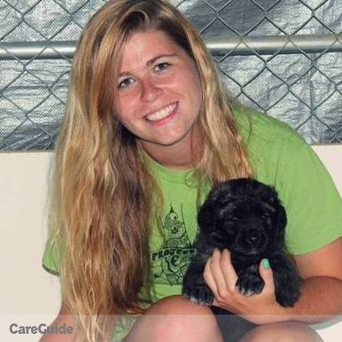 Pet Care Provider Amanda Austin's Profile Picture