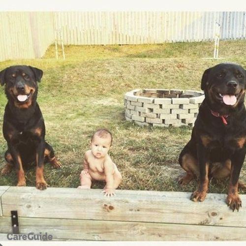 Pet Care Provider Alex Gagne's Profile Picture