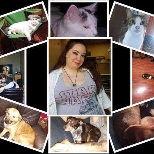 Pet Care Provider Tiffany Jones's Profile Picture