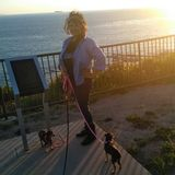 Torrance House Sitter Looking For Work in California