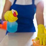Housekeeper, House Sitter in Bergenfield