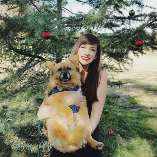 Pet Care Provider Rachel F Gallery Image 3
