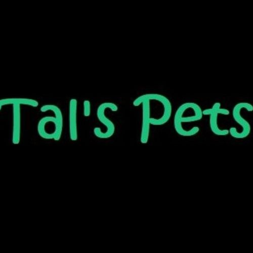 Owner of a pet care business, Tal's Pets, which is centered in Pottstown PA and serves the surrounding areas.