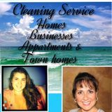 Drake Services - Excellent Housekeepers
