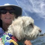 Looking to pet sit in San Diego,fun,honest,and animals love me!NO SNAKES