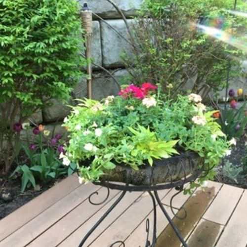 Gardener Provider Janice C Gallery Image 3