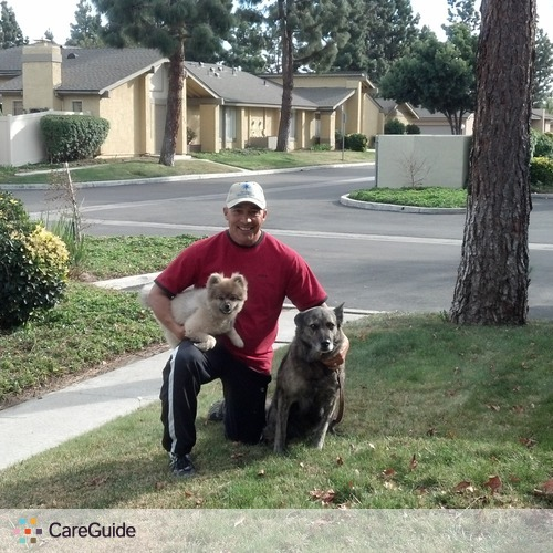 Pet Care Provider Kenny Flores's Profile Picture