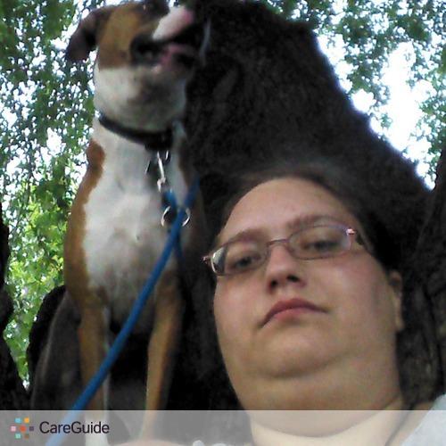 Pet Care Provider Amanda L's Profile Picture