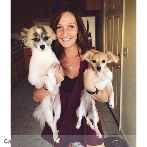 Pet Care Provider Shauna K's Profile Picture
