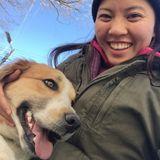 Loving Dog Walker/Sitter in Richmond. Flexible Hours.