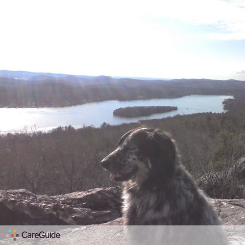 Pet Care Provider Cathi R's Profile Picture
