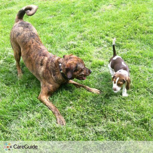 Pet Care Provider Jessica Tucker's Profile Picture