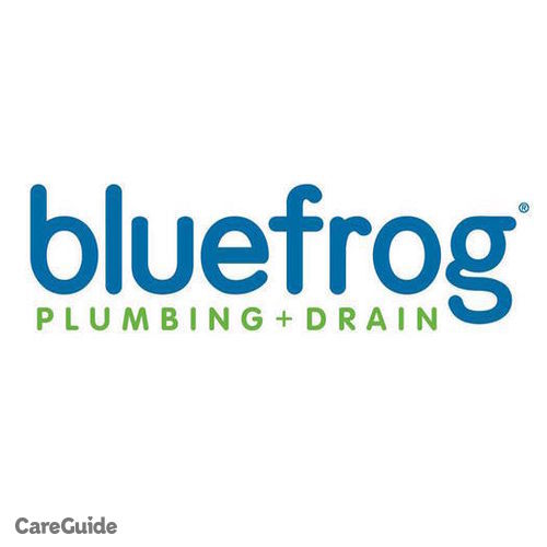 Plumber Job Blue Frog's Profile Picture