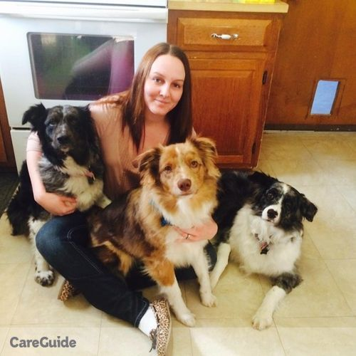 Pet Care Job April Mchugh's Profile Picture