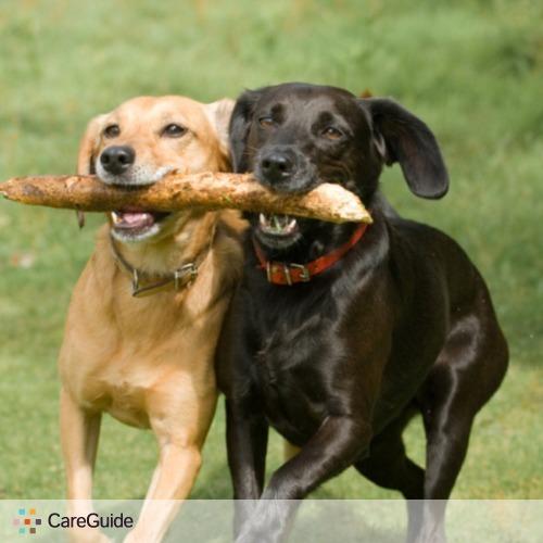 Pet Care Provider Enrique Aguillon's Profile Picture