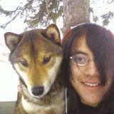 Brampton Pet Care Provider Seeking Work