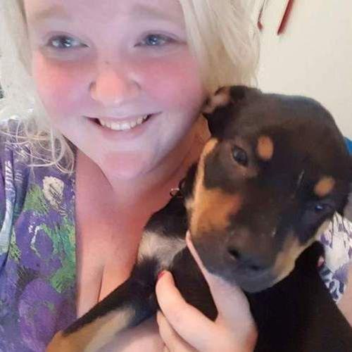 Pet Care Provider Amanda R's Profile Picture