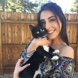 Pet Sitter Job in Flagstaff