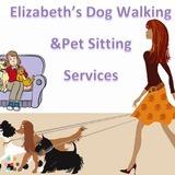 Dog Walker, Pet Sitter in Whitestone