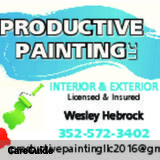 Excellent and affordable painter available