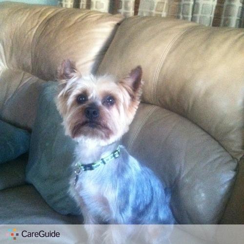 Pet Care Provider Dawn Kelly's Profile Picture