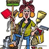 Housekeeper, House Sitter in Oldsmar