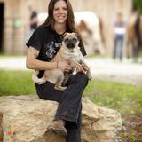 Dog Walker, Pet Sitter in Martins Ferry