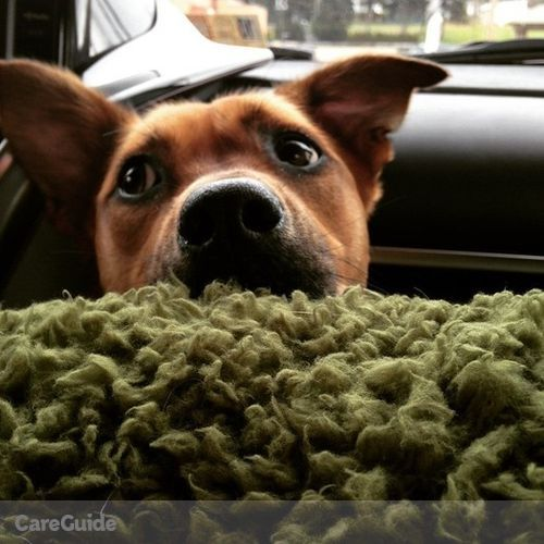 Pet Care Provider Charlotte Christensen's Profile Picture