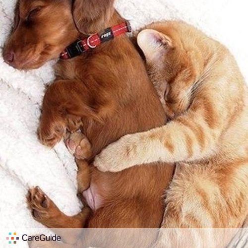 Pet Care Provider Romai Taylor's Profile Picture