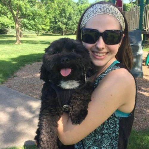 PetSitter com - Pet Sitting, Dog Walking, Kennels, and Pet