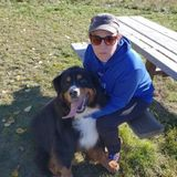 Knowledgeable Dog Lover Available for Petsitting and Walking in Red Deer