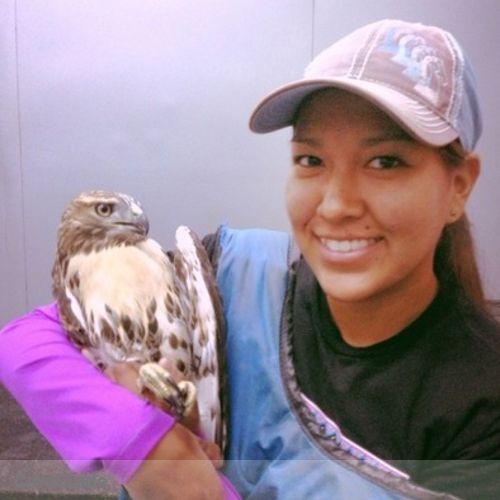 Pet Care Provider Monica Todacheenie's Profile Picture