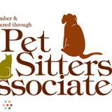 Dog Walker, Pet Sitter in Waterbury