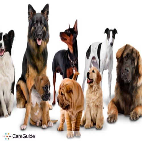 Pet Care Provider Tyya's Trails and Tails Dog Walking Services S's Profile Picture