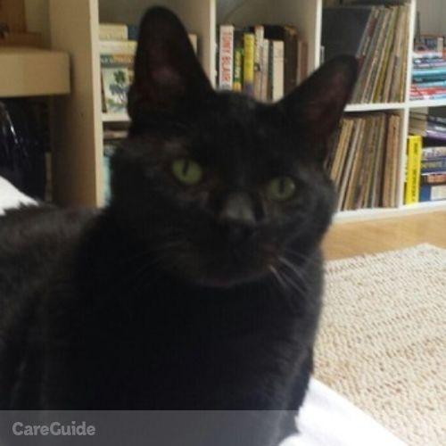 Pet Care Job Emily Glasser's Profile Picture