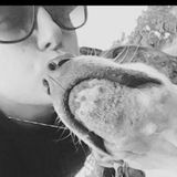 Experienced pet sitter who dosnt just see pets as just pets they are family !