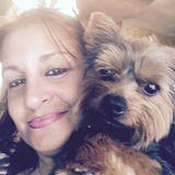 For Hire: Wonderful Pet Service Provider in Bridgeport