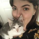 For Hire: Caring animal loving cat or dog sitter in Los Angeles