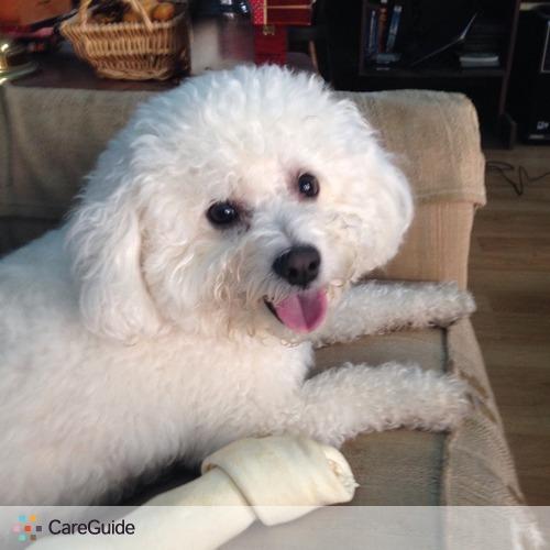 Pet Care Provider Annarbor P's Profile Picture