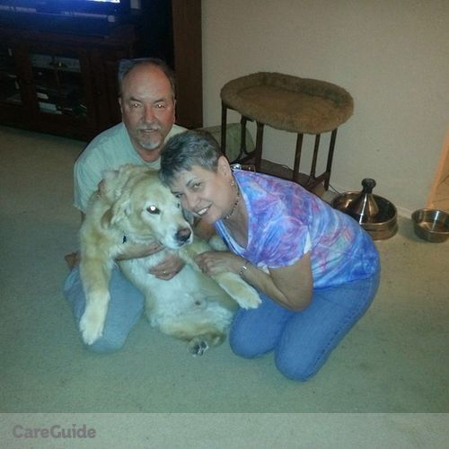 Pet Care Provider Lesley Baber's Profile Picture