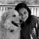 Pet Sitter/Dog Walker Here to Serve Your Pets.
