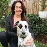 For Hire: Wonderful Pet Sitter in Santa Monica